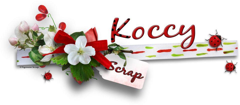 Koccyscrap