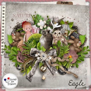 http://scrapfromfrance.fr/shop/index.php?main_page=product_info&cPath=88_91&products_id=5850
