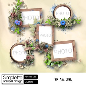 Simplette_Vintage_Love_Clusters_SSD_preview