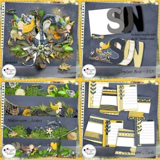 http://scrapfromfrance.fr/shop/index.php?main_page=product_info&cPath=88_91&products_id=6731