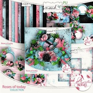 aurelie_rosesoftoday_clt_pv