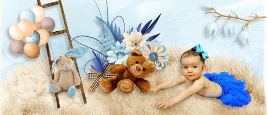 teddy story